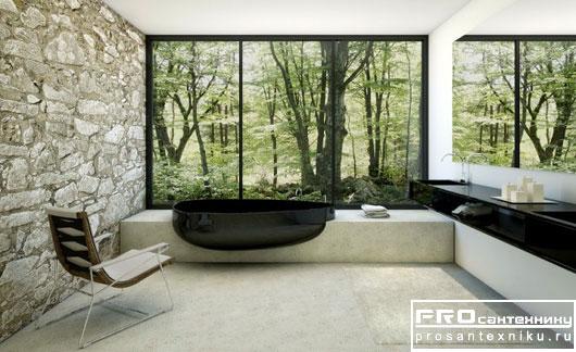 Необычная черная ванна